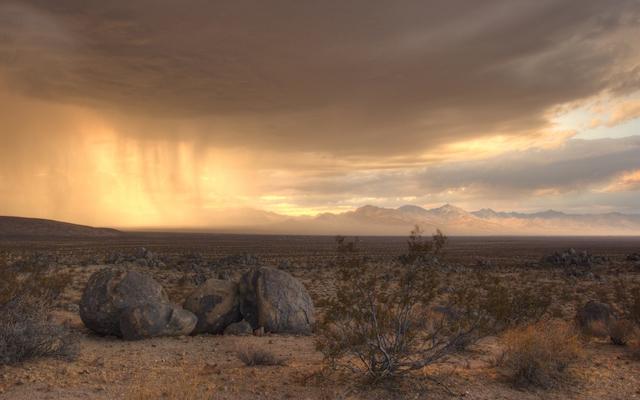 dusty_desert copy